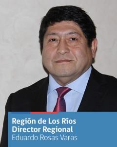 JUNJI Los Ríos participó del primer seminario de Teletón sobre inclusión educativa