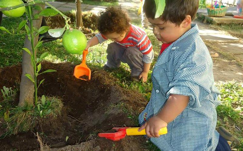 Son cinco los recintos educativos que cuentan con esta certificación los cuales adecúan los espacios educativos, potencian el reciclaje, los niños y niñas trabajan en huertos e invernaderos y postulan proyectos para capacitar en esta temática a la comunidad educativa.